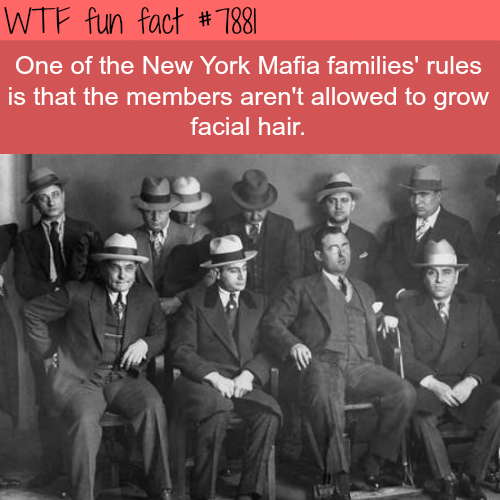 The New York Mafia rules - WTF fun facts