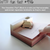 the omoshiro note pads wtf fun facts