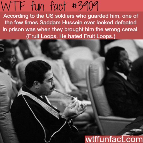 The only time Saddam Hussein looked defeated - WTF fun facts