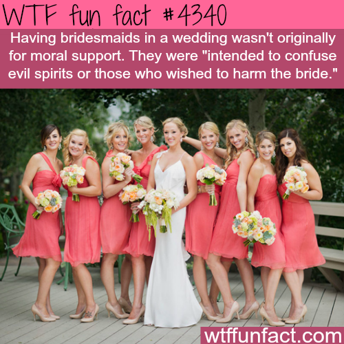 The origins of the bridesmaids -  WTF fun facts
