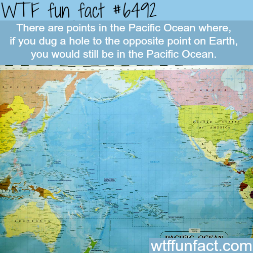 The Pacific ocean - WTF fun facts