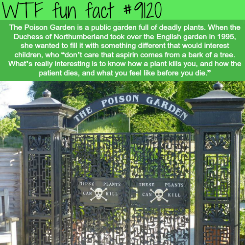 The Poison Garden - WTF fun fact