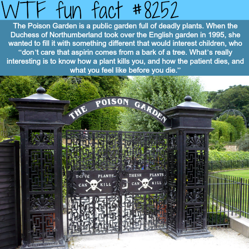 The Poison Garden - WTF fun facts