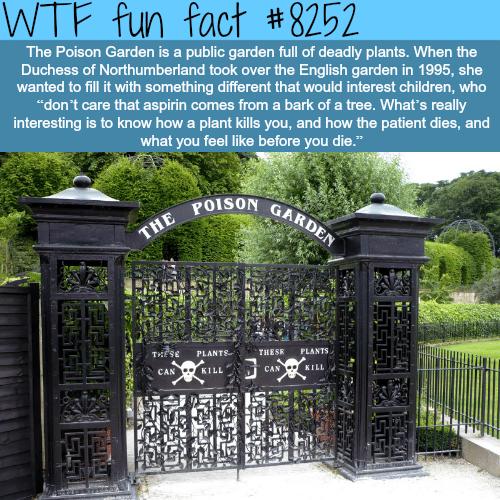 The Poison Garden - WTF fun facts