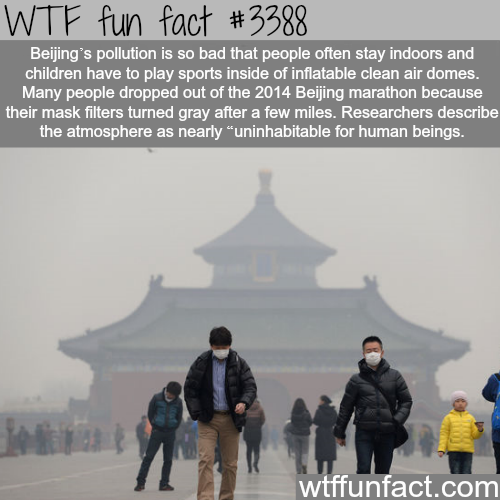 The pollution in Beijing -  WTF fun facts