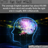 the power of the brain wtf fun fact