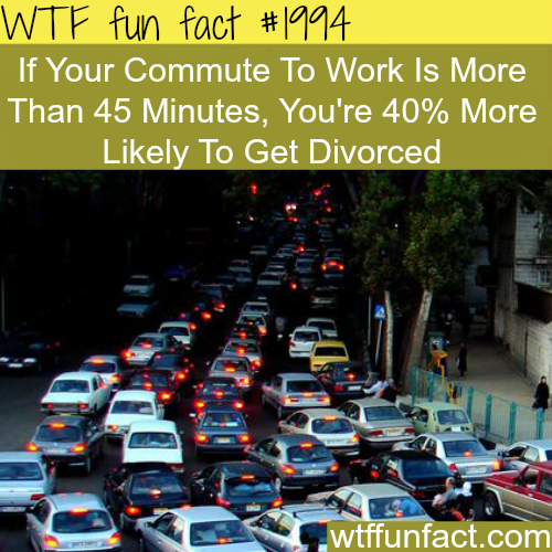 The probability of getting divorced -WTF fun facts