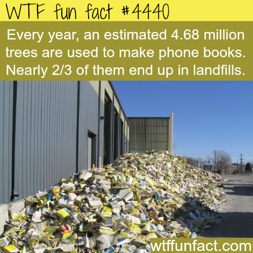 The problem with phone books -   WTF fun facts