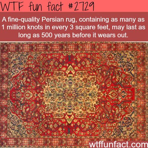 The quality of persian rugs - WTF fun facts