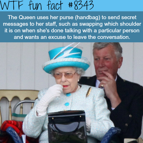 The Queen's purse - WTF fun facts