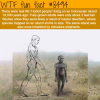 the real life hobbit people wtf fun facts