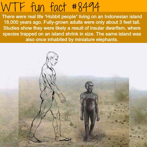The Real Life 'Hobbit People' - WTF fun facts