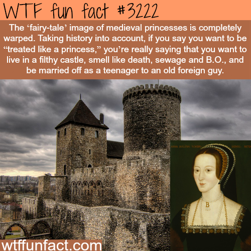 The real life of medieval princesses -WTF fun facts