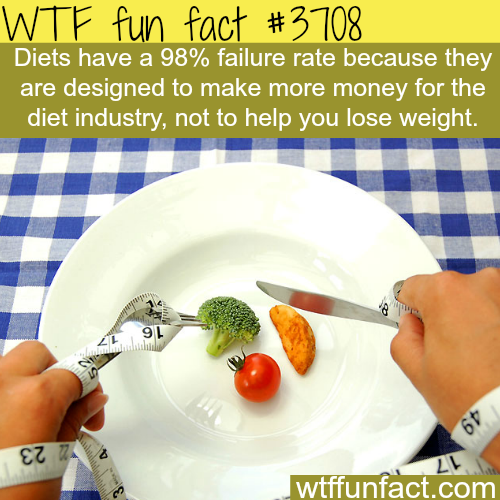 The real reason why diets don't work -  WTF fun facts