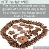 the record for longest cow dung garland of 125