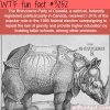 the rhinoceros party of canada