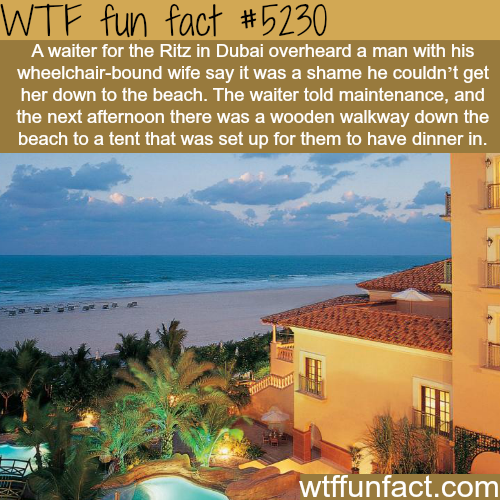 The Ritz-Carlton in Dubai - WTF fun facts
