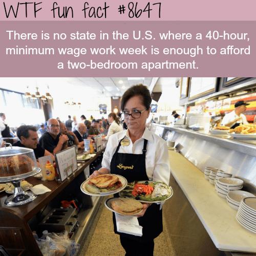 The sad facts about minimumwage - WTF fun facts