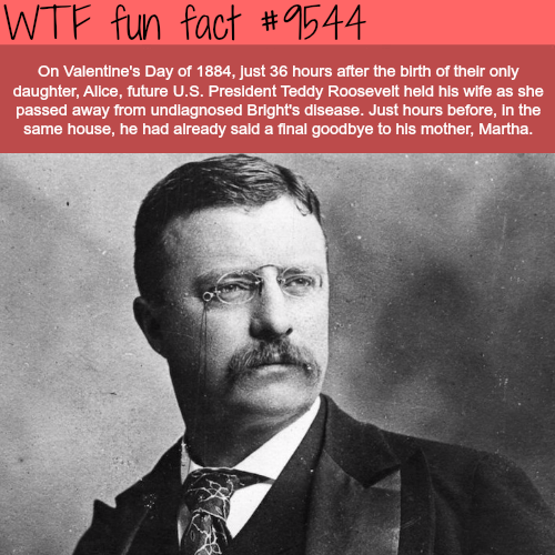 The saddest valentine's day -  WTF fun fact
