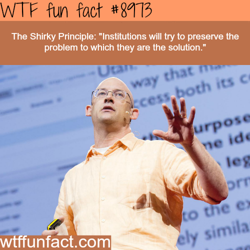 The Shirky Principle - WTF fun fact