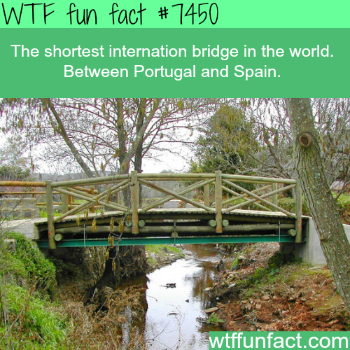 The shortest international bridge in the world - Facts