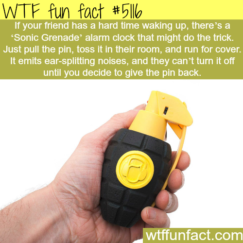 The solution for heavy sleepers - WTF fun facts