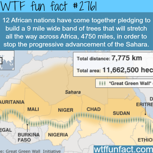 The solution to stop the Sahara desert - WTF fun facts