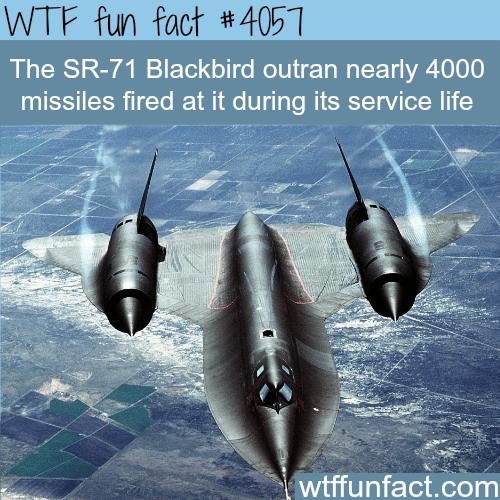 The SR-71 Blackbird - WTF fun facts