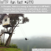 the swing at the end of the world wtf fun facts