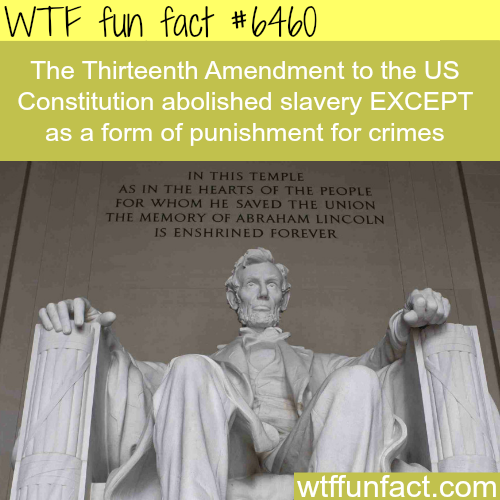 The Thirteenth Amendment - WTF fun facts
