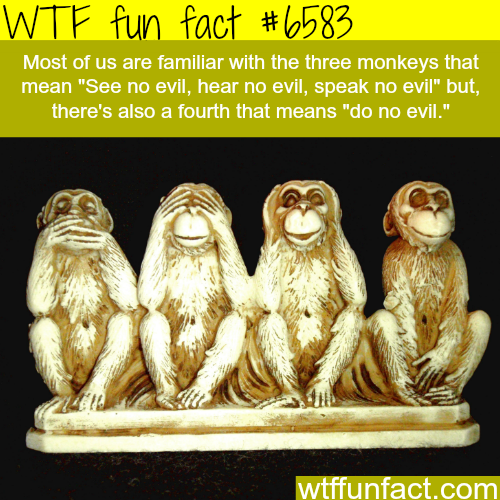 The three monkeys - WTF fun facts