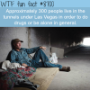 the tunnels in las vegas wtf fun facts