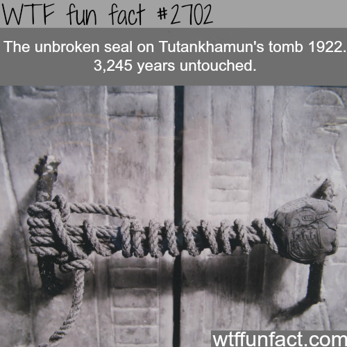 The unbroken seal to king Tutankhamun's tomb - WTF fun facts