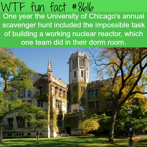 The University of Chicago students built a nuclear reactor - WTF fun facts