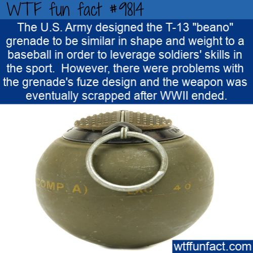 "The U.S. Army designed the T-13 ""beano"" grenade to be similar in shape and weight to a baseball in order to leverage soldiers' skills in the sport.  However"