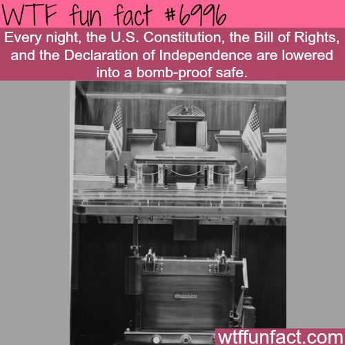 The U.S. Constitution - WTF fun fact