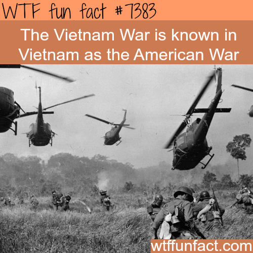The Vietnam war - WTF fun facts