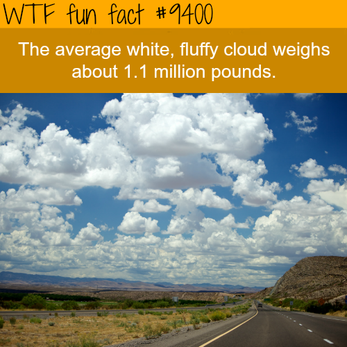 The weight of an average cloud - WTF fun facts