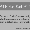 the word hello