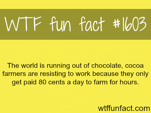 The world is ruining out of chocolate! - WTF fun facts