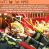 theme park kidzania wtf fun facts