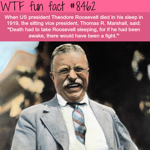 Theodore Roosevelt death - WTF fun facts
