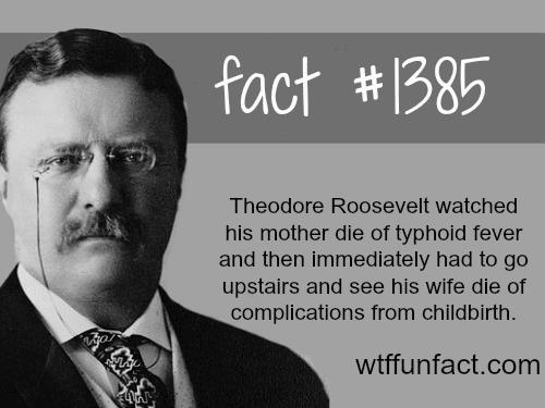 Theodore Roosevelt -people'sfact