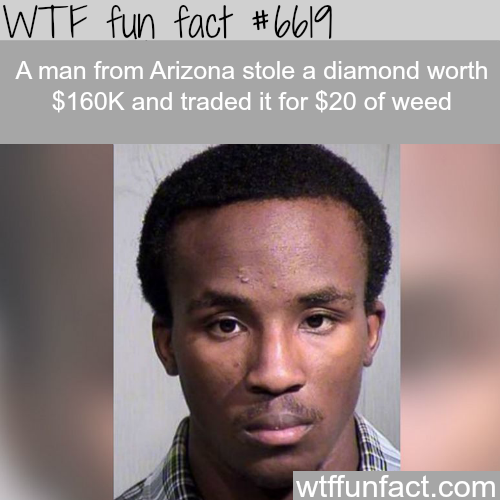 Thief stole a diamond worth $160k and trades it for $20 worth of weed - WTF fun facts