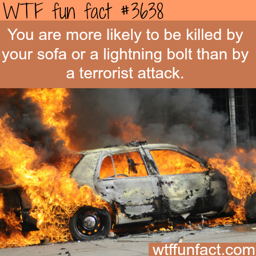Things that are more likely to kill you than a terrorist attack -  WTF fun facts