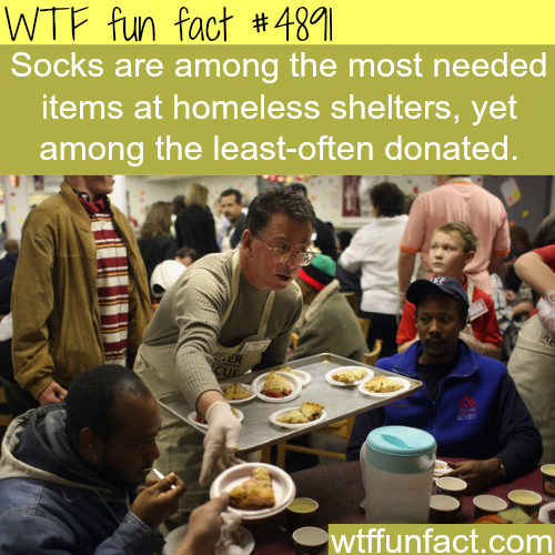 Things that homeless shelter needs - WTF fun facts