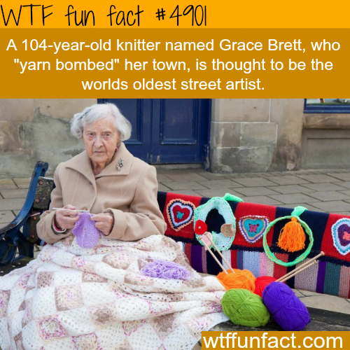 "This 104-year-old knitter ""yarn bombed"" her town - WTF fun facts"