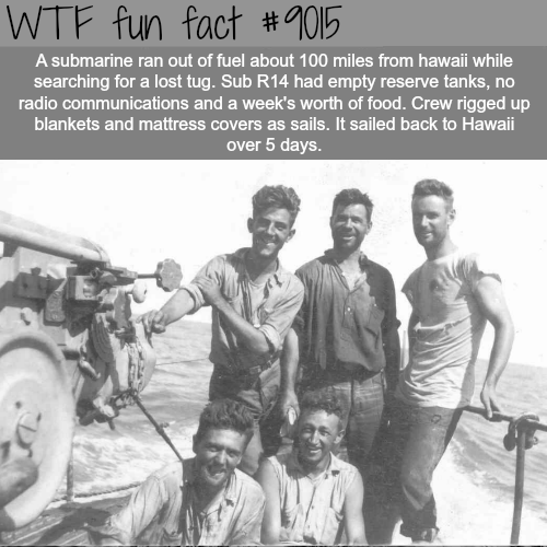 This crew sailed 100-mile using blankets - WTF fun facts