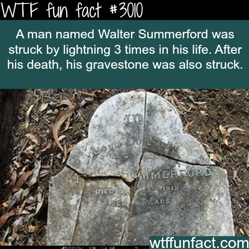 This man got struck by lightning three times in his life -WTF fun facts