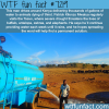 this man in kenya provides water to thirsty